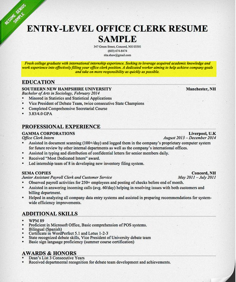 professional resume objective