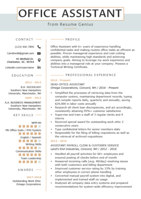 Resume Office Assistant View Example