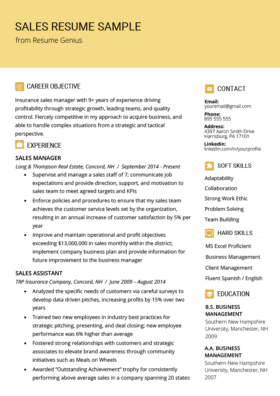 Sales Manager Resume Sample & Writing Tips | Resume Genius