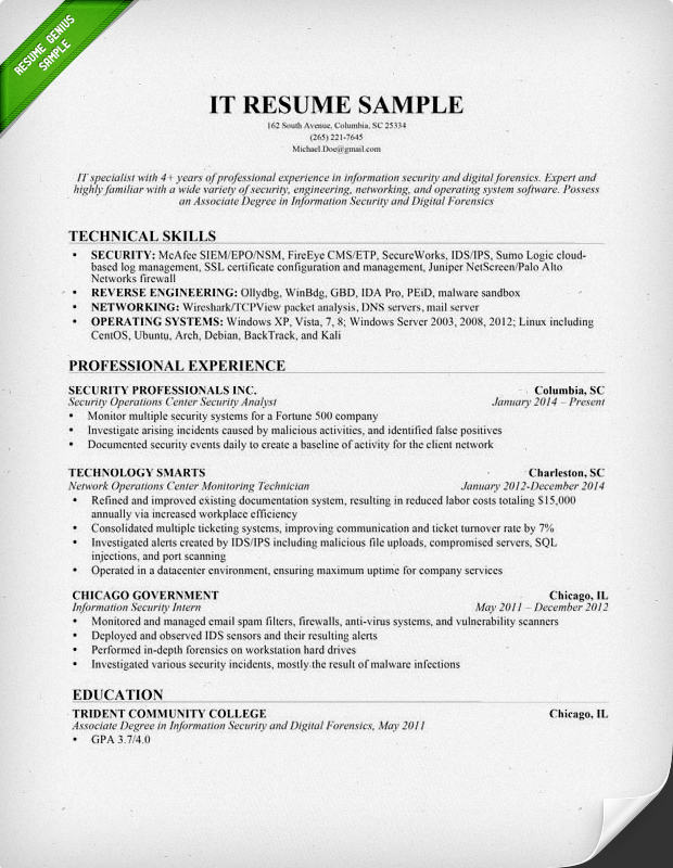information technology it resume sample. Resume Example. Resume CV Cover Letter