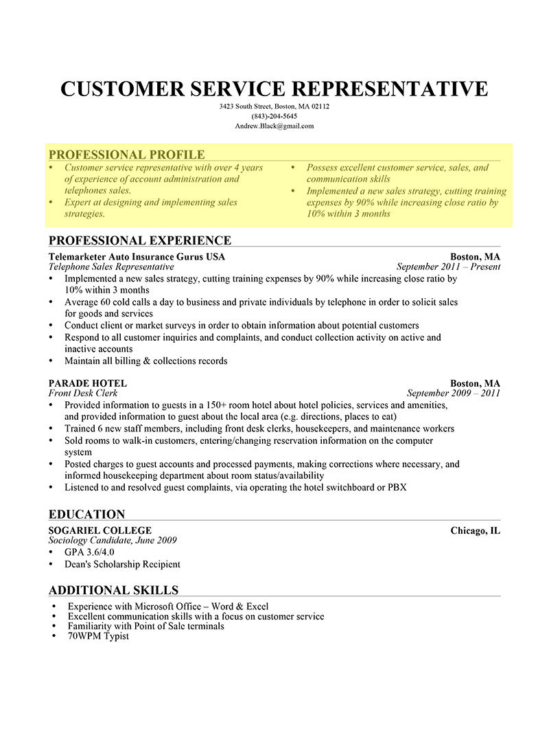 professional profile bullet form resume