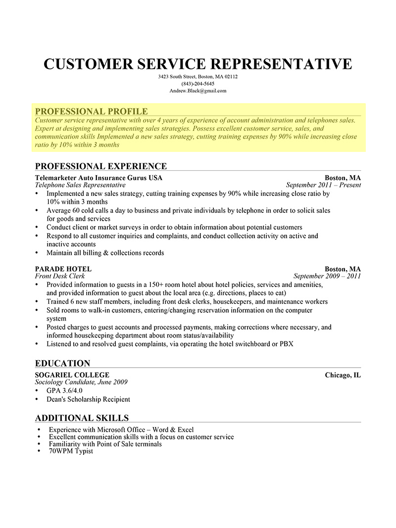 professional profile paragraph form resume