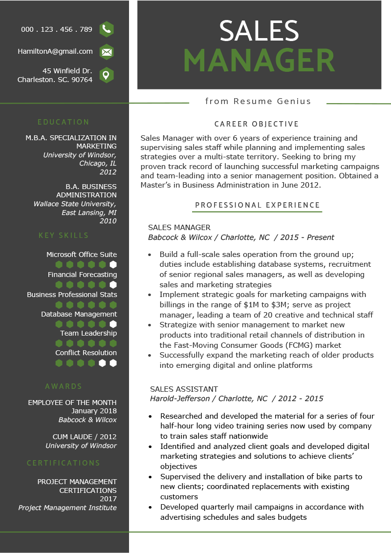 Sales Manager Resume Example Template