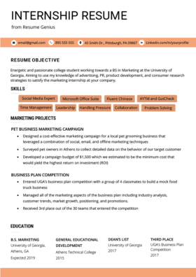 Resume Internship View Example