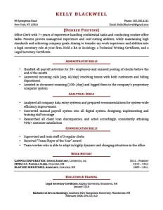 brick red career changer resume template - Business Resume Template Word