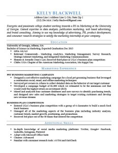 blue entry level resume template - Beginner Resume Template