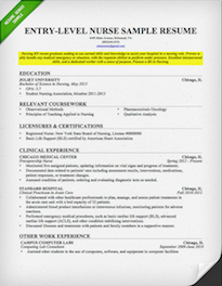 Exceptional Nursing Resume Objective Example