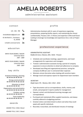 Original Cosmopolitan Resume Template