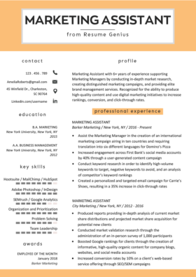 Social Media Resume Example Writing Tips