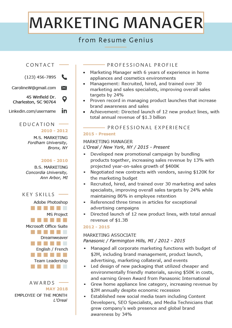 Professional Or Executive Resume Whats The Difference >> Marketing Manager Resume Example Writing Tips Rg