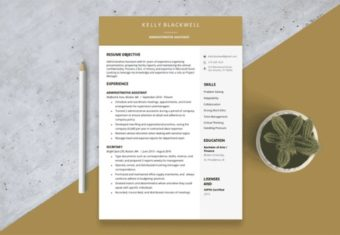 One page resume image, template for a 1 page resume