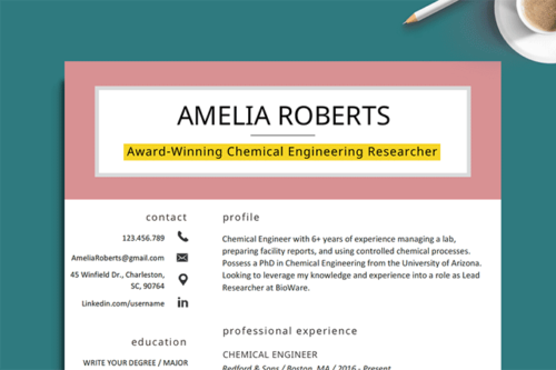 image of a resume with the resume headline highlighted