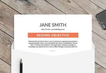 Image showing how a resume objective should look on a well-written resume.