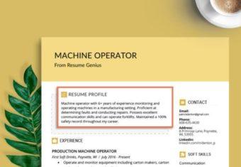 A job seeker's resume profile.