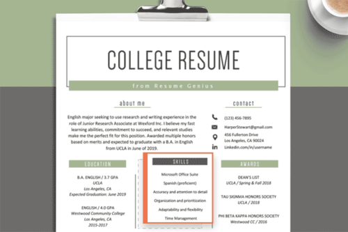 skills section of a resume highlighted on a resume. Resume skills section that mentions Microsoft office, language proficiency, and other soft skills