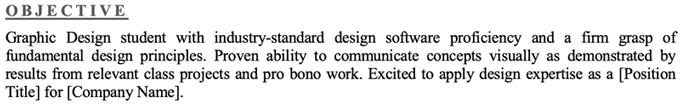 Undergraduate Resume Objective Section Example